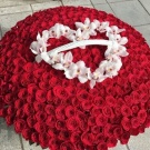 1001 Red Roses