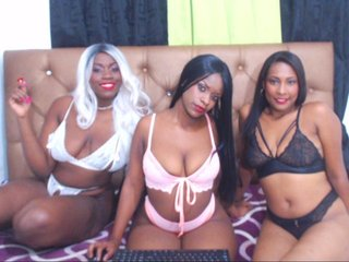Partylatinax: Live Cam Show