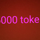 5000 tokens
